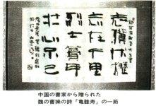 Sho_s.jpg (13046 バイト)